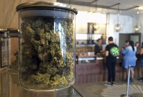 Prop. 64 Will Bring Pot Sales Out Of The Shadows