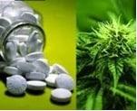 cannabis-myths-busted-6