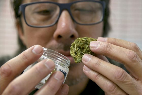 How One Cali County Is Working With Industry To Find A Balance On Weed Regs