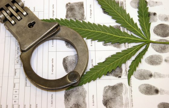 Leader Of California Marijuana Smuggling Ring In Custody After 30 Years On The Lam