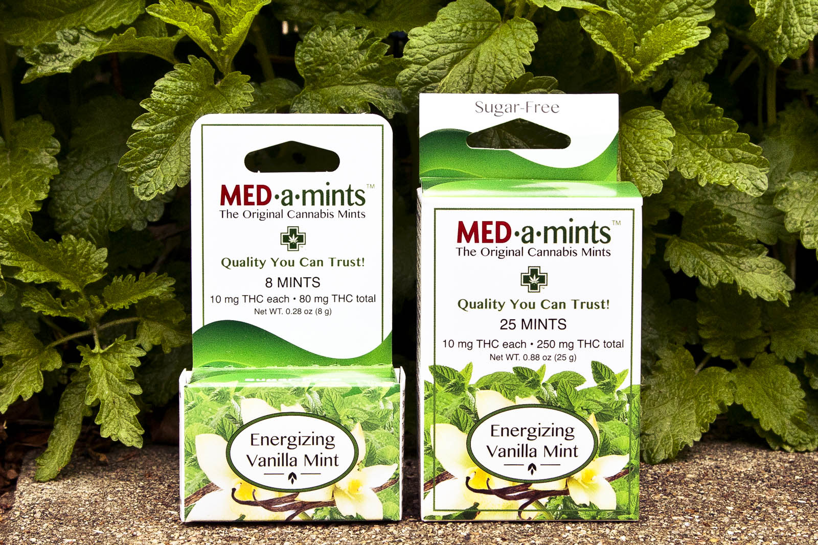 medamints-potent-thc-cannabis-marijuana-mints-030