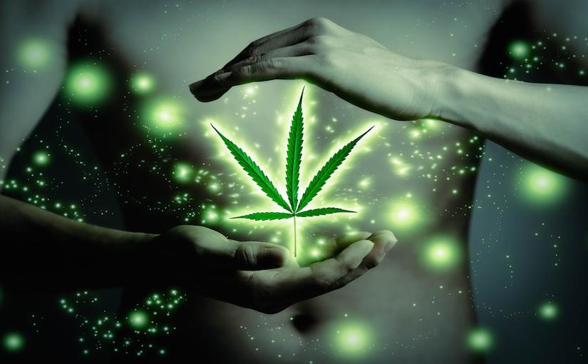 medical-marijuana-medicine