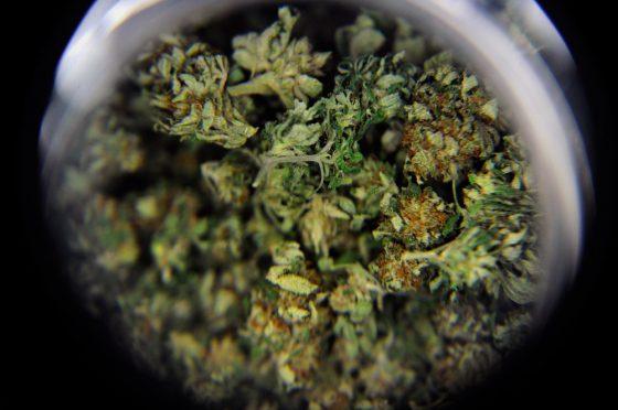 Stacked Against Legalization? Top Foe Of Ohio Medical Marijuana Gets 2 Advisory Board Slots