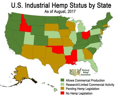 The Industrial Hemp Farming Act Is Back — Is This The Year Congress Legalizes The Crop?